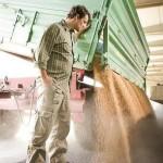 Landwirt bei Getreideübernahme