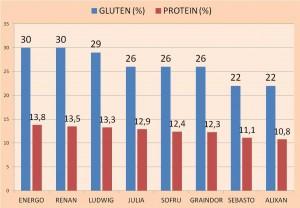 GLUTEN + PROTEINI - 2